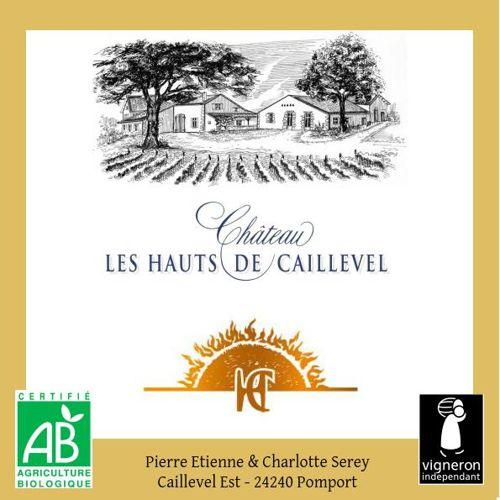 Chateau les Hauts de Caillevel